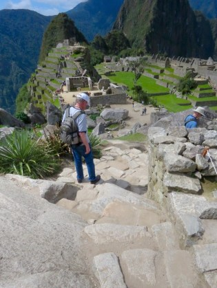 Machu Picchu–vista with Inca pathways