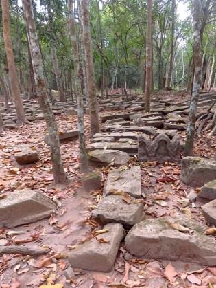 Siem Riep, Cambodia-Ta Prom Temple restoration