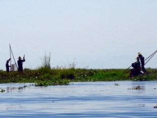 Myanmar–Inle Lake–Tending The Floating Gardens