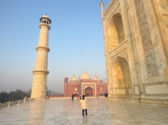 Taj Mahal–Golden Glow In The Sunshine