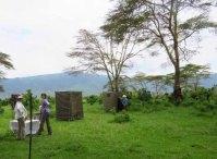 Tanzania Ngorongoro Crater Bush Toilets!