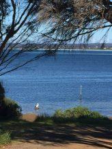 View of American River, Kangaroo Island