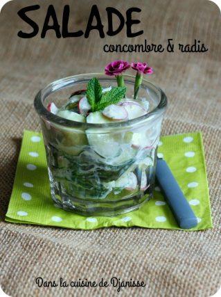 Vegan recipe : cucumber and radish