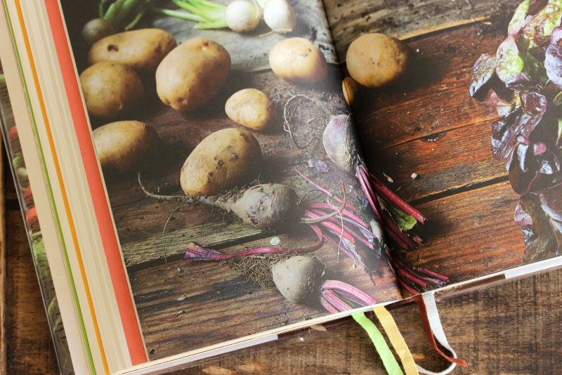 legumes-du-jardin