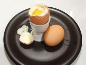 egg-1329279