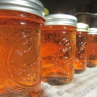 apple pectin stock jelly