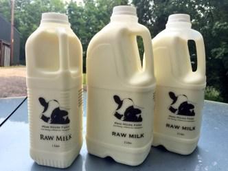 Raw Milk v Pasteurised Milk