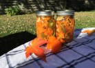 Pickled Habañero Peppers, Escabeche