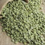 green coffee beans contain more acid