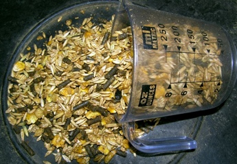 commercial horse feed made with corn, oats, and barley mixed with molasses