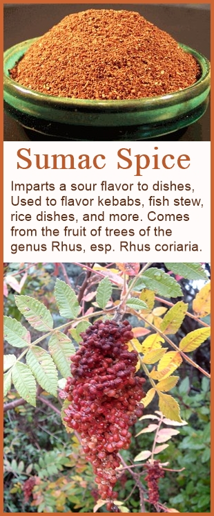 Sumac Spice overview