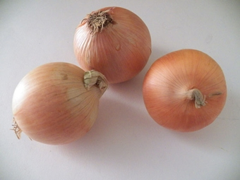spanish yellow onions, approx. medium size