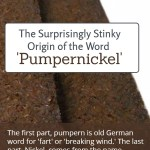 Origin of the Word Pumpernickel