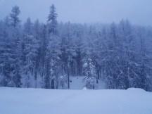 Winterwunderland S-charl
