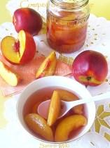 Compot-de-nectarine0