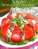 Salata-de-ton-bucati-cu-maioneza3
