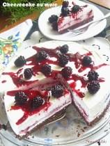 Cheesecake-cu-mure-1
