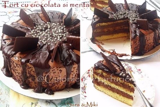 tort-cu-ciocolata-si-menta-x1