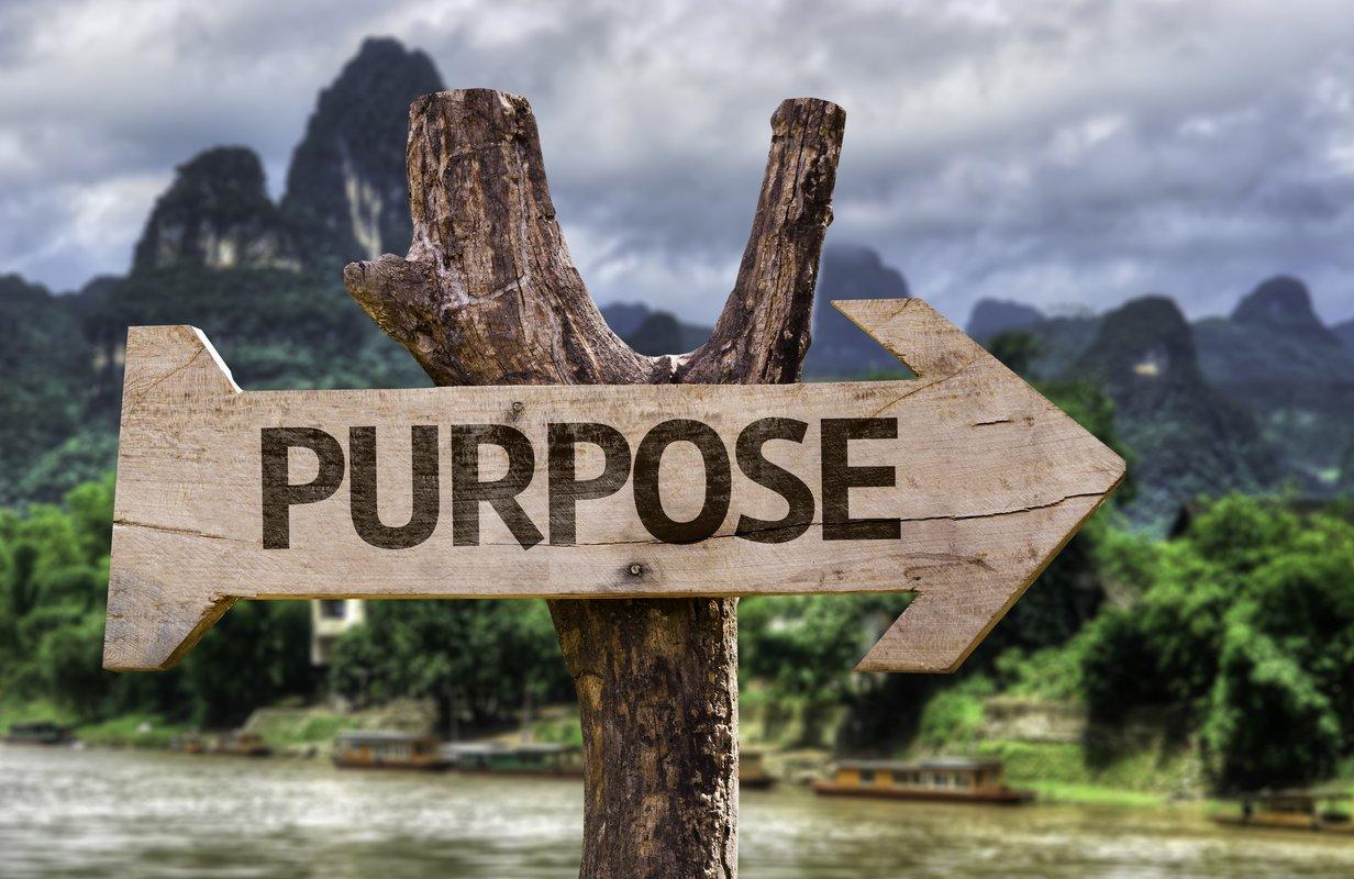 A Purpose Driven Business