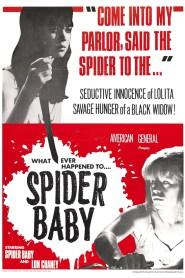 Spider Baby