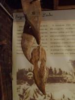 gants en bois pour les semis