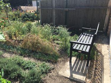 Cultivate-London-Salopian-Kitchen-Garden-August-2016_1005