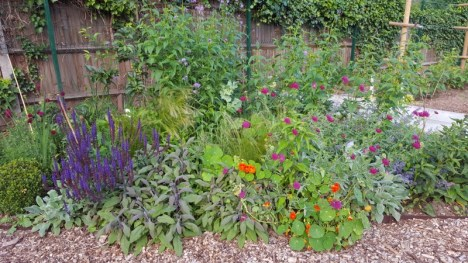 Cultivate-London-Salopian-Kitchen-Garden-Events-and-Workshops4