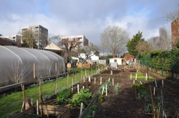 Cultivate-London-Salopian-Kitchen-Garden-Winter-Open-Day-20174