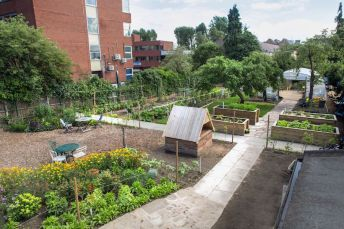 Salopian-Kitchen-Garden-Summer