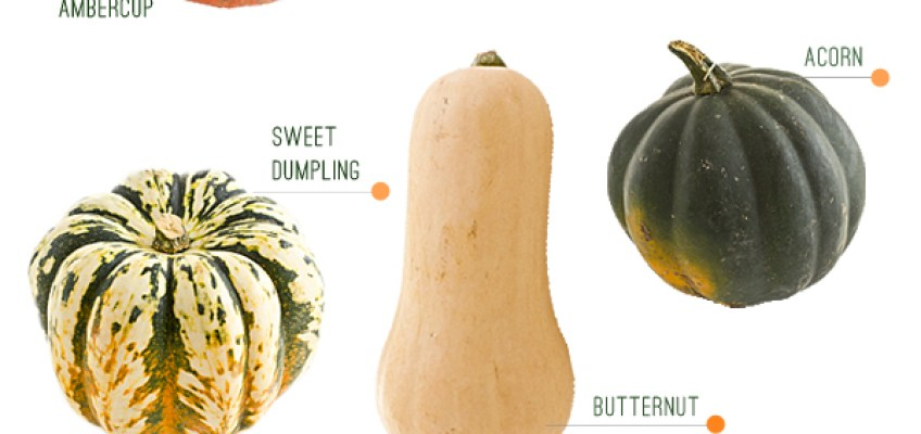 Cultivate's Winter Squash Guide