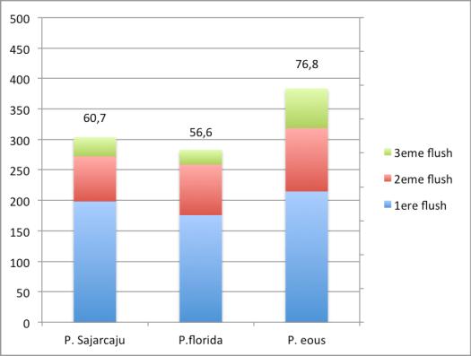 Le rendement(E.B.) de pleurotus ostreatus atteint 76,8%, soit prés de 380g de champignons frais pour 500g de substrat sec.