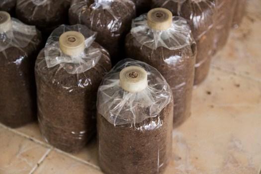 Les sacs de polyétylène haute densité résistent correctement à des chaleurs jusqu'à 100°C, parfait pour la pasteursiation.