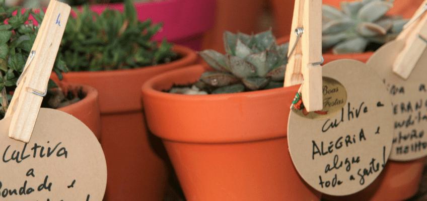 Presentes verdes e DIY para este Natal