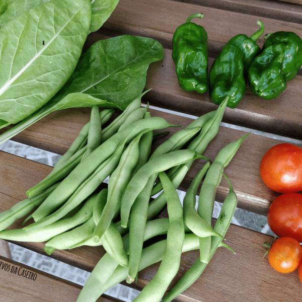 acelgas, feijão-verde, tomate cherry e pimentos padron