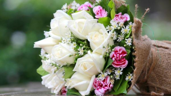 Какие цветы на дарить день рождения девушке   Культурная ...