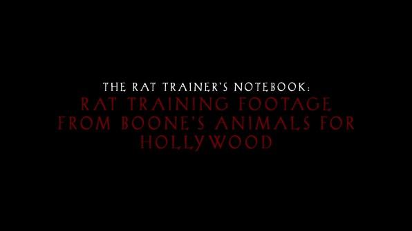 Rat Trainer Feature 01