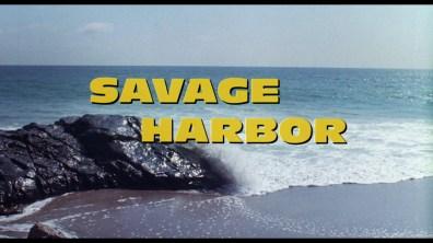 Savage Harbor cap 1