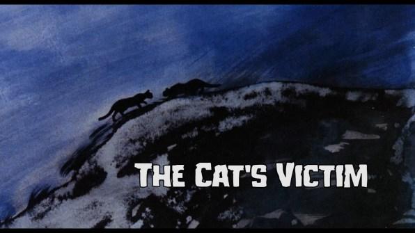 The Cat's Victim Interview