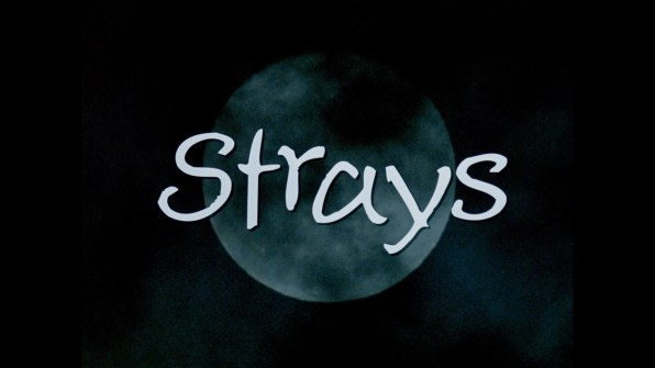 Strays screencap