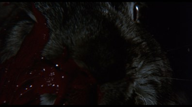 Night of the Lepus screencap