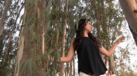 Valdetorres en danza   video-danza