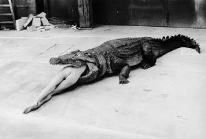 Helmut Newton 01 Crocodile