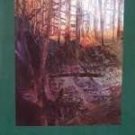 """Vladimir Nabokov, """"Glorie"""", Iaşi, Editura Polirom, 258 de pagini"""