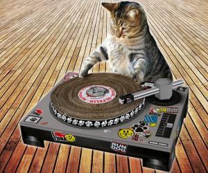 Cat scratch turntable culturageek.com.ar gato