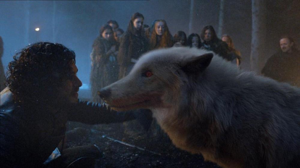 Cultura Geek Game of Thrones Direwolves Ghost
