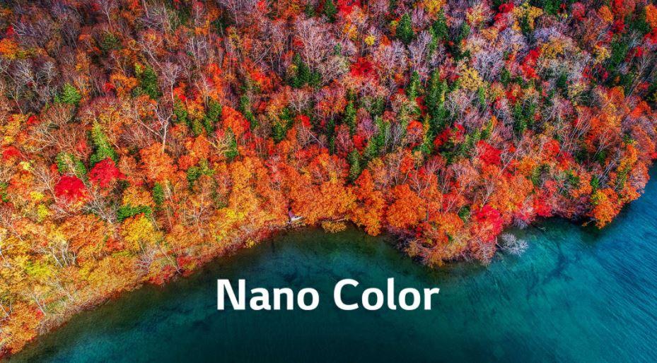 "LG lanzó el Smart TV NanoCell de 65' en Argentina, su ""mejor LED ..."