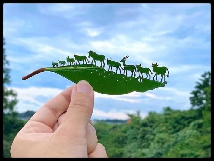 lito leafart hojas miniatura 20