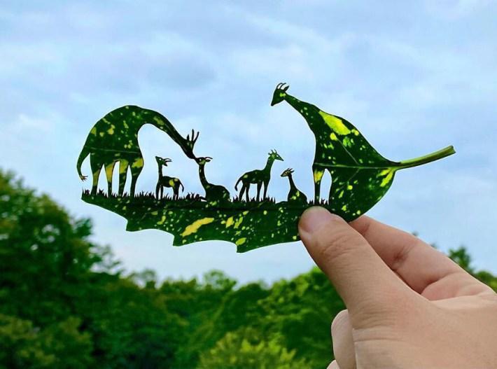 lito leafart hojas miniatura3