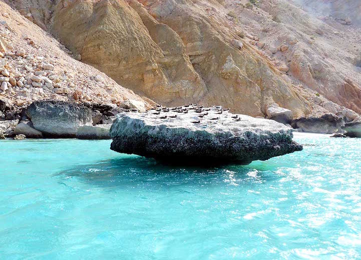 Socotra.Cultura Inquieta12