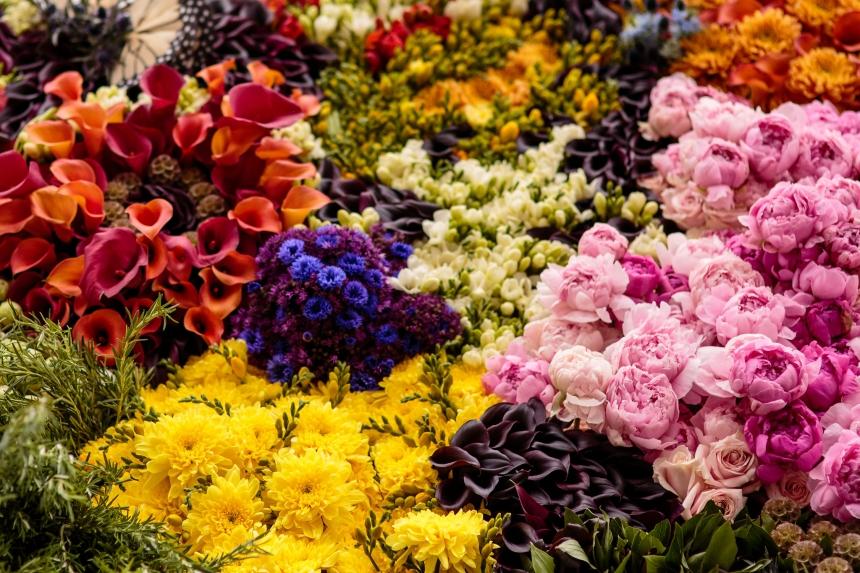 flowers culturainquieta4